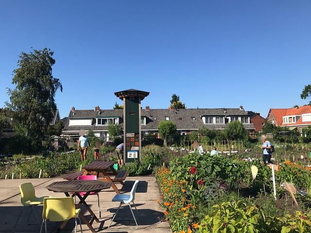 オランダの菜園にたたずむビーホテル