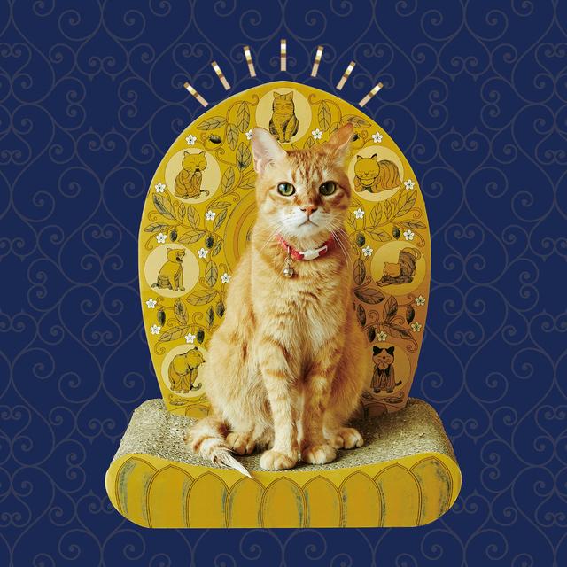 おてらぶとコラボ! 愛猫はわが家のご本尊 光背つめとぎ おてらぶ フェリシモ ネコ 猫 ねこ 猫爪とぎ 爪とぎ 仏様 仏さまになれる つめちご 猫グッズ ネコグッズ