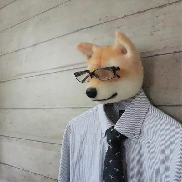 犬のメガネ掛け