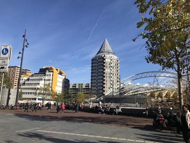 斬新な建物が林立するロッテルダム