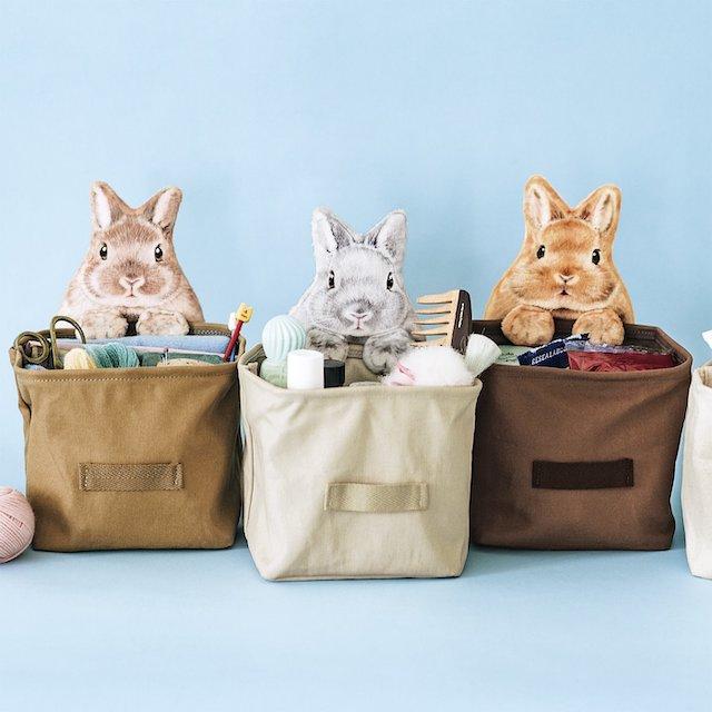 ウサギがのぞく収納ケース