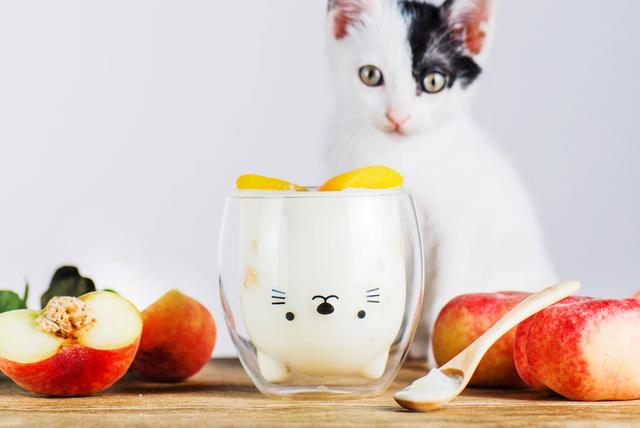 GOOD GLAS アニマルウォールグラス 動物 猫 ねこ いぬ 柴犬 しば ラブラドール いのしし グラス 耐熱グラス ホットOK