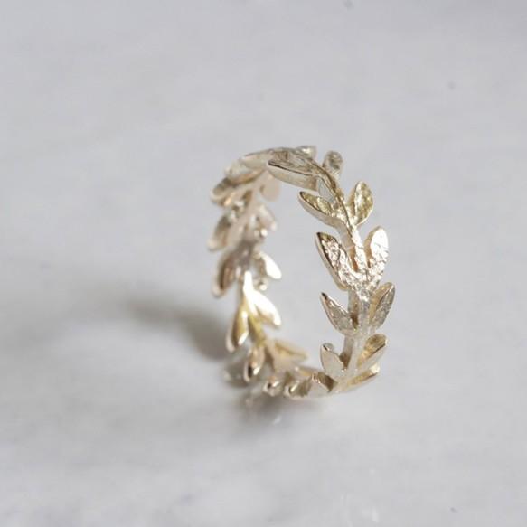Olive leaf ring {R066K10}