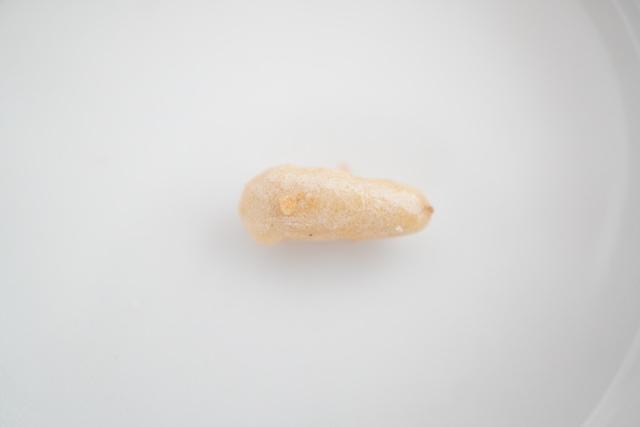 細長い豆菓子