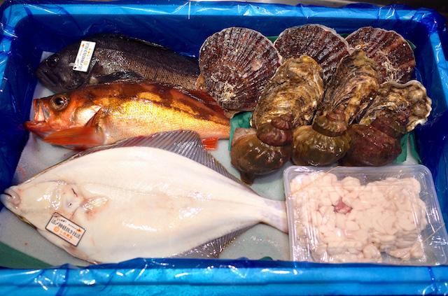 小西鮮魚店/鮮魚詰め合わせセット