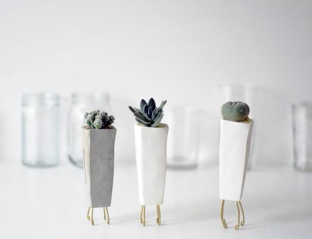walk pot tall 植物