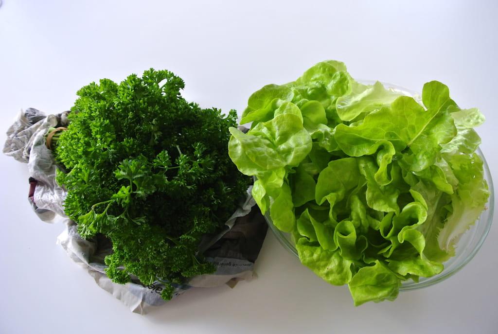【知っ得ライフハック】捨てないで!しおれたハーブや葉野菜をシャキッとさせる方法