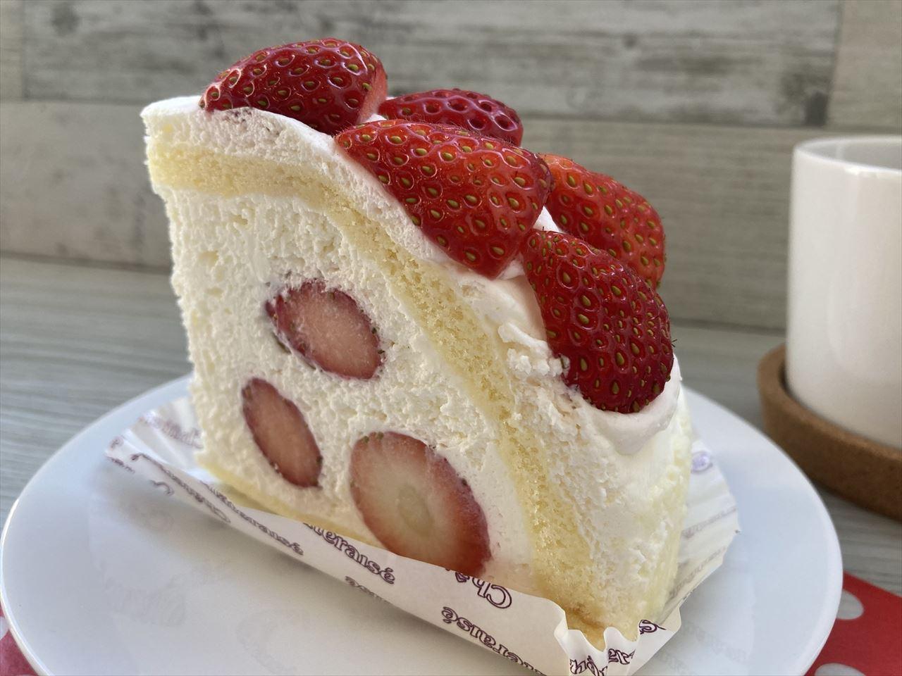 とちおとめ種苺使用 大きな苺のズコット