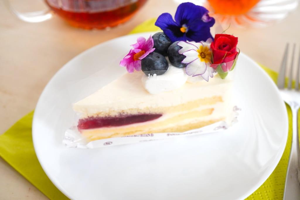 レアチーズケーキとフォーク