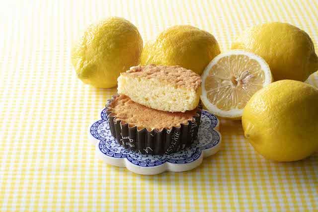 瀬戸内レモンのマドレーヌ
